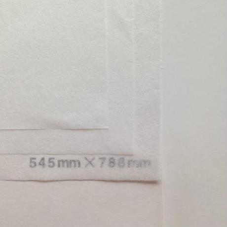 ホワイト 14g 545mm × 788mm 100枚