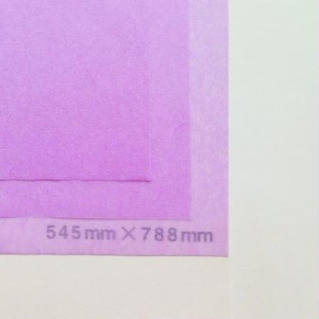 バイオレット 14g 545mm × 788mm 50枚