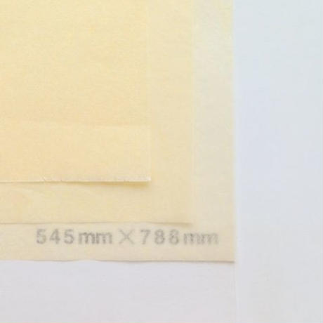 アイボリー 14g 272mm × 197mm  1600枚
