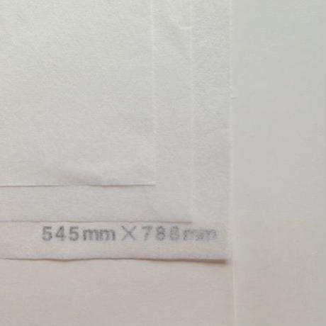 ホワイト 14g 272mm × 394mm  200枚
