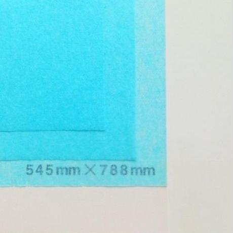 ブルー 14g   545mm × 394mm  100枚