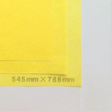 イエロー 14g   545mm × 788mm 400枚
