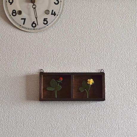 壁掛け ブローチセット ヘビイチゴ