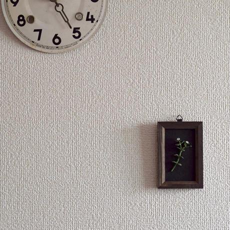 壁掛け ノミノツヅリ