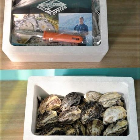 【農林水産大臣賞受賞生産者】大入島オイスター 0.9kg 約16個程度