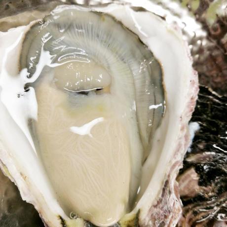 岩牡蠣 2kg   福端(フクタマ)宮崎県日向市細島産