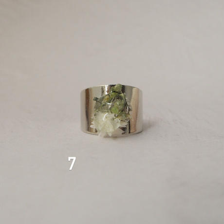 DRY FLOWER  RING(silver)