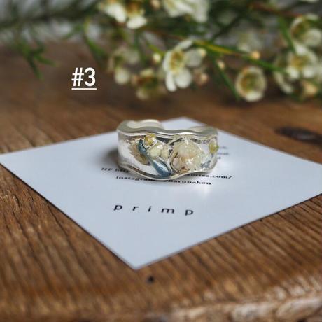 DRY FLOWER RING #2