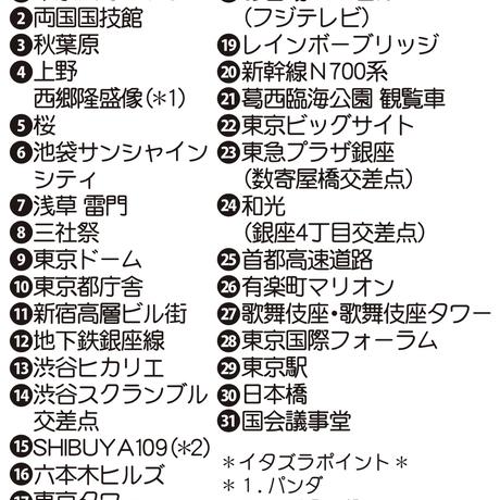 MISATO ASAYAMA 東京今昔物語ふろしき【二四巾】現代の東京<夜>