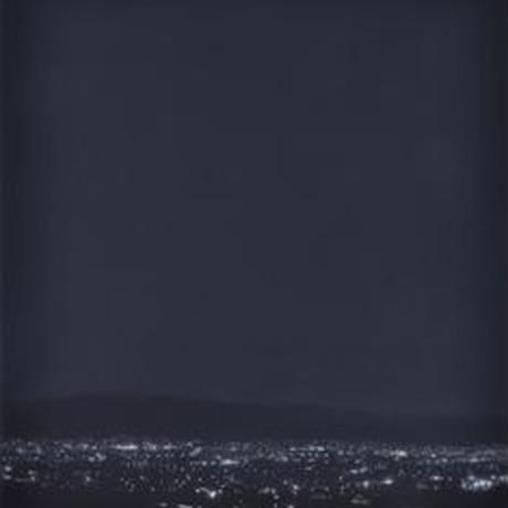 阪本トクロウ [夜景、F10号]