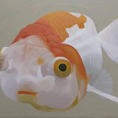 金魚3[山下三千夫]