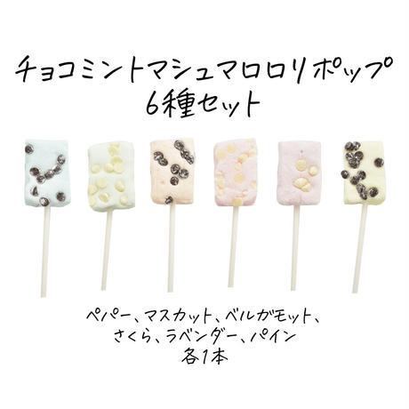 チョコミントマシュマロロリポップ6種セット(簡易包装 冷蔵 送料別)
