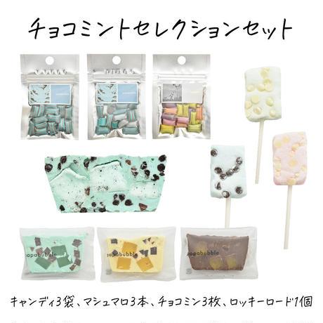 チョコミント セレクションセット(簡易包装 冷蔵 送料別)