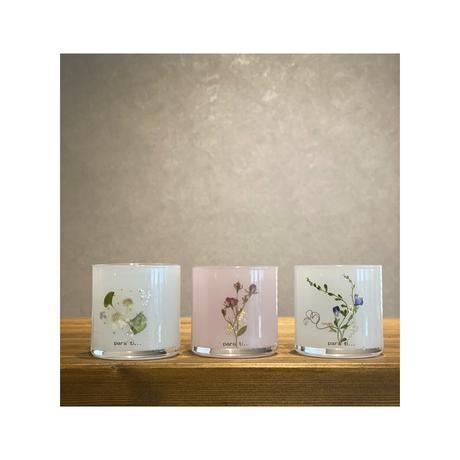 (lesson) jel by Casa de Luz(ジェル応用・全4種)