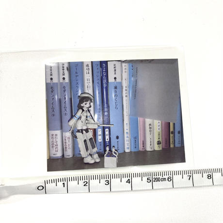 【ゆーきん】本棚のフィギュア ステッカー