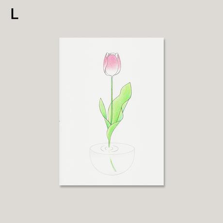 春日井さゆり / 原画(全11種)