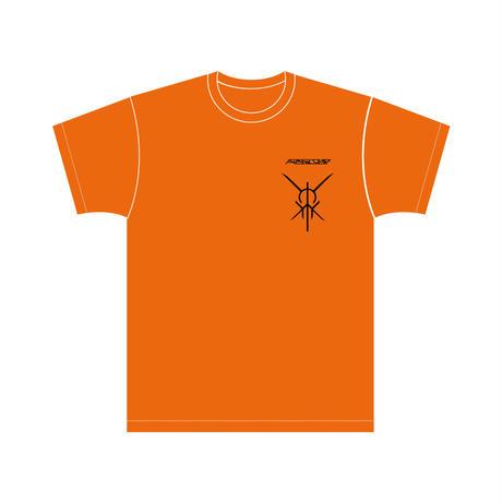 STRIVE logo T-shirt  Orange