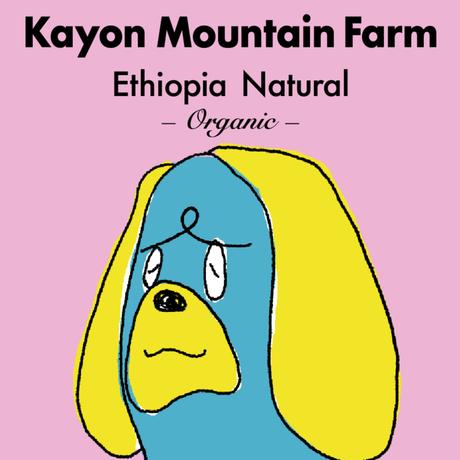 [オーガニック]エチオピア/カイヨンマウンテンファーム -ナチュラル- 100g