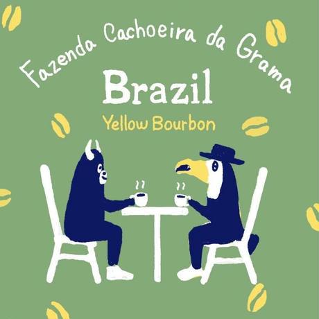 カショエイラ ダ グラマ農園 / ブラジル 12oz(340g)