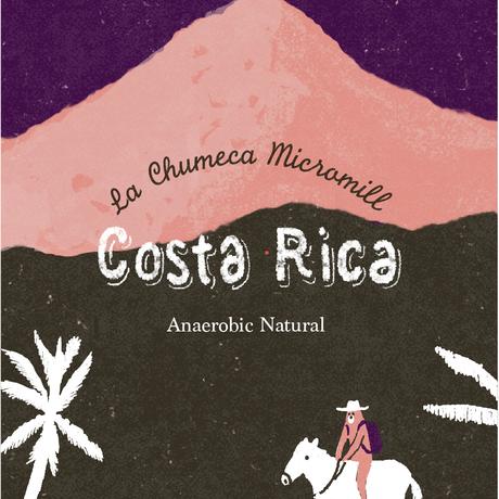 ラ チュメカ マイクロミル / コスタリカ アナエロビック-ナチュラル  100g