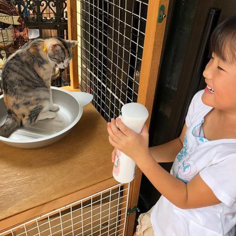 天然素材のネコアレルギー対策ケア PURE CAT R-100 本体350ml +詰替え1000ml