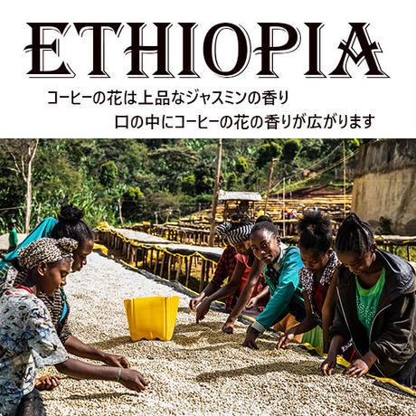 【国名】エチオピア 【地区】イルガチェフェ ゲデブ ウォッシュ 1000g 深煎り