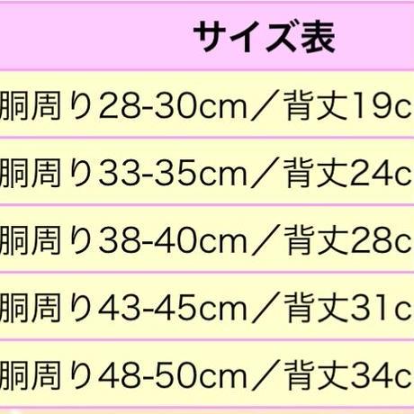 5cae02612c1c5107892adc7b