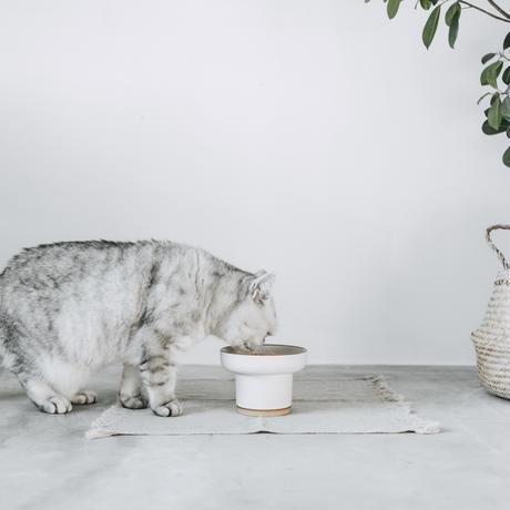 猫用食器 MOG