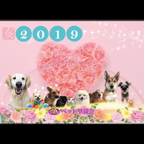 【NPO法人ペット里親会】2019年カレンダー  (2冊で1,000円)