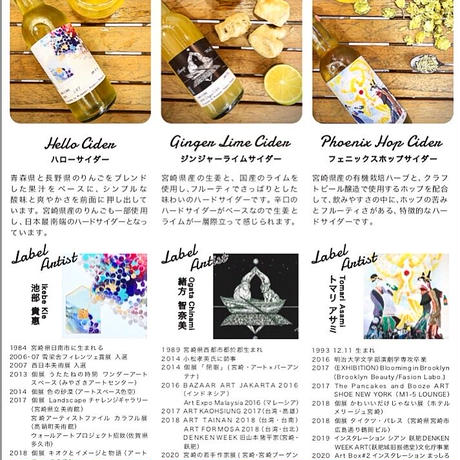 ART Bottle Hard Cider アートボトルハードサイダー6本(2本ずつ)