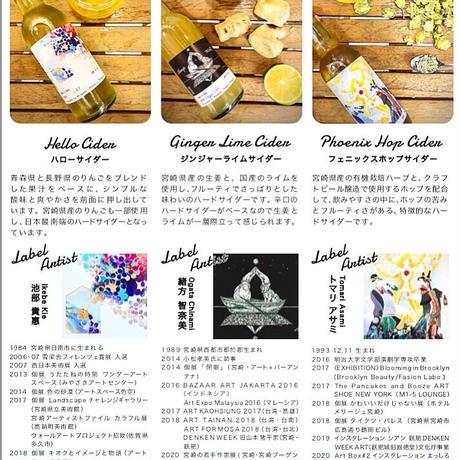 ART Bottle Hard Cider ハローサイダー ドライ  6本セット
