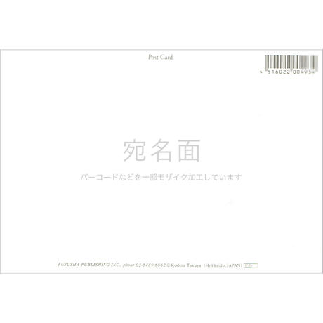 小寺卓矢ポストカード風樹社シリーズ3枚セット【10%お得】