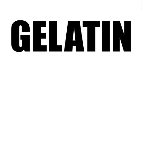 Gelatin シルクスクリーン ロゴT 黒(メンズ&レディス)