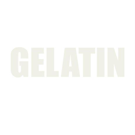 Gelatin シルクスクリーン ロゴT 黒 WHITE on WHITE(レディス)