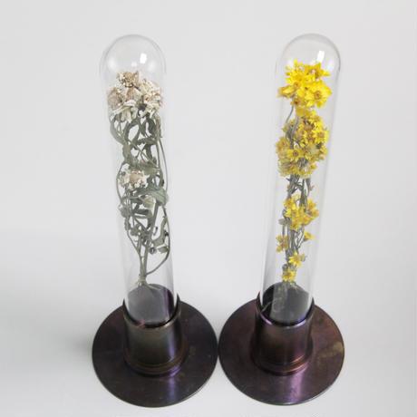 HERBARIUM BRASS GLASS DOME & FLOWER VASE      RUST