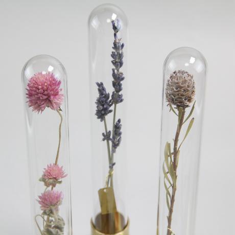 HERBARIUM BRASS GLASS DOME & FLOWER VASE SOLID