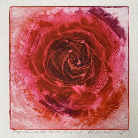 One hundred rose  Red   Koharu 小春 2004年