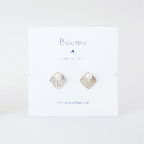 GAE048:ツチメキカプレートイヤリング /  Brass Hammered finish Plate Earrings