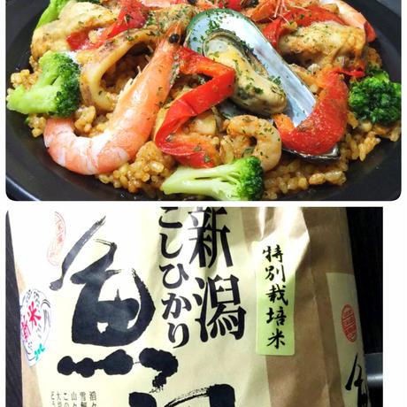 魚沼コシヒカリ特別栽培米パエリア×2台/ピザ2枚セット