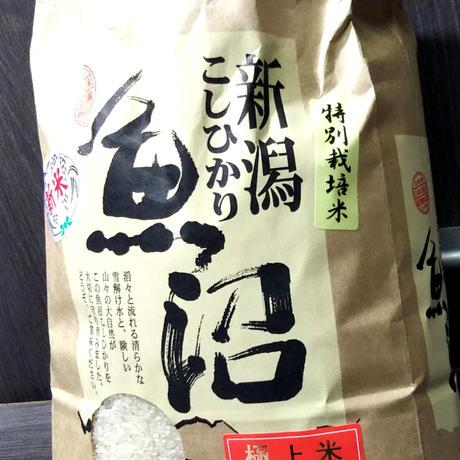 極上米!!魚沼産コシヒカリ特別栽培米5kg×2