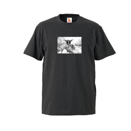 PIZZATORU Photo  T-Shirts / ピザトル フォトTシャツ  [Black]