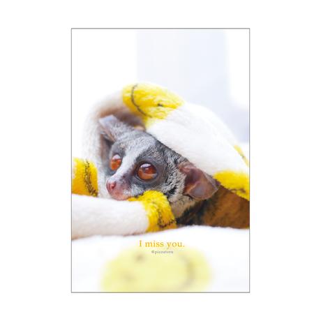 PIZZATORU Post Card /ポストカード  [I miss you]