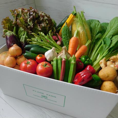 【定期便商品】旬のみやざきお野菜15品目セット+おまけ2品目    ※定期便でおまけ野菜が更に1品目増えてお得‼︎