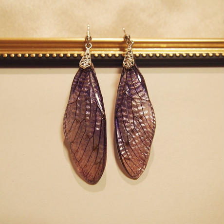 【蝉】Cicada Pierce - Purple Gradation -