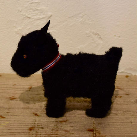 ハンガリー 真っ黒なテリア犬