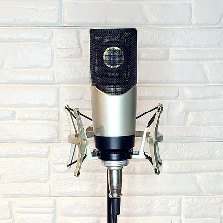 Condenser Microphone color code gold コンデンサーマイクロフォン