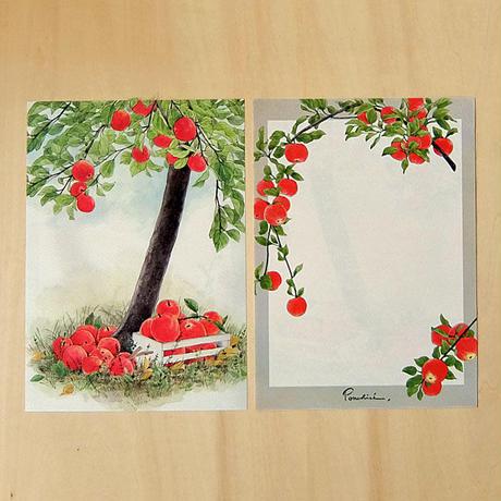 LS507 レターセット(A5)林檎