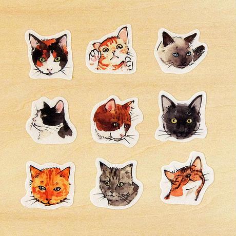 フレークシール 猫