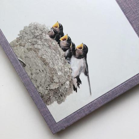 川内倫子写真集 Des oiseaux/ デゾワゾー