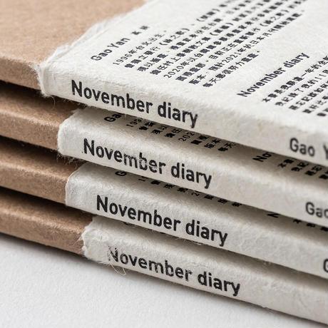 高 妍|November Diary